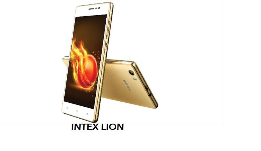 Intex lion