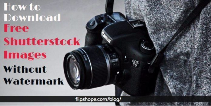 How to Download Free Shutterstock Images Without Watermark